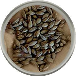 Product image for Caramel 200/Crystal 75 Malt