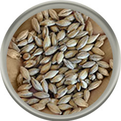 Product image for Cookie (Biscuit) Malt