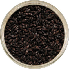 Product image for Roasted Barley Malt
