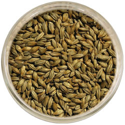 Product image for Vienna Malt
